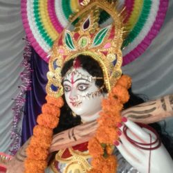 Saraswati Puja 10Feb, 2019 (3)